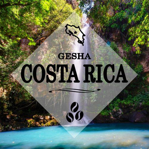 Gesha Coffee